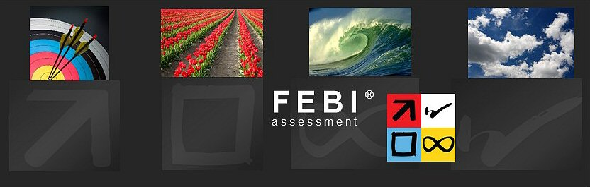 FEBIassessment_4up