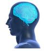 Free-brain-training-261x300